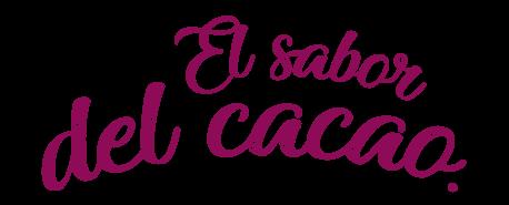 Pastel Xoccolat de la zarza